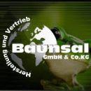 Baunsal Logo